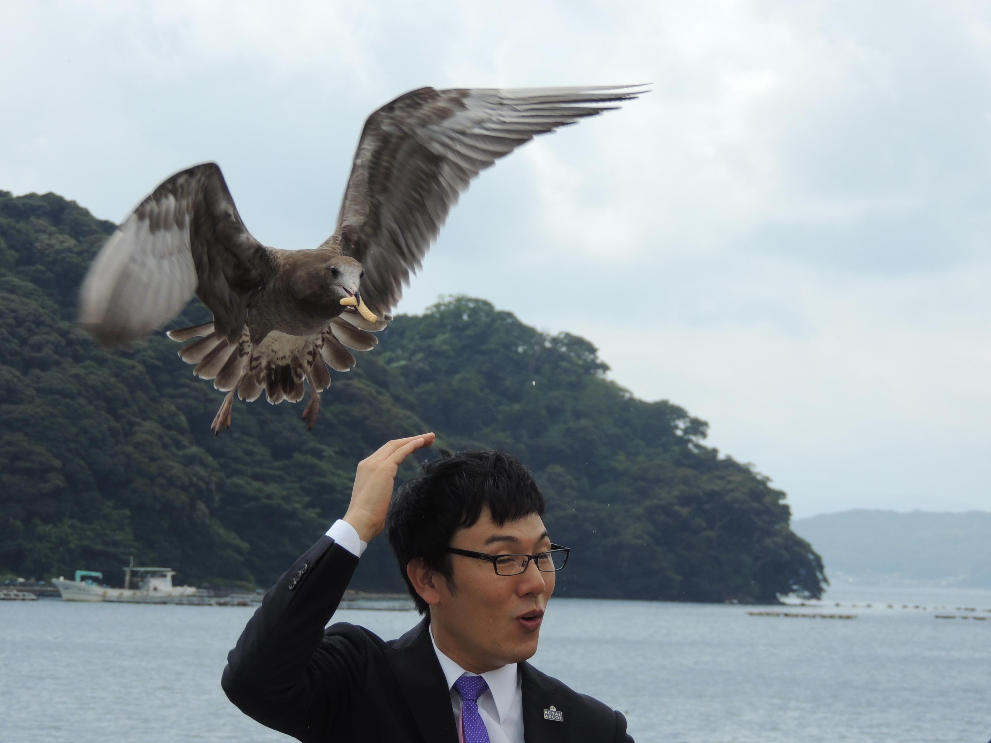 http://news.yoshimoto.co.jp/20160903205907-5de145eccdca293deeb82bd1ffe605baa9db9d46.jpg