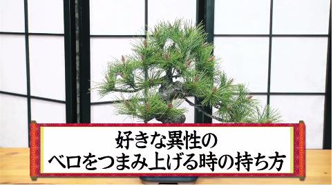 http://news.yoshimoto.co.jp/20170714173809-3c1441d5bc22f809479db60ef55c0ff225d74e03.png