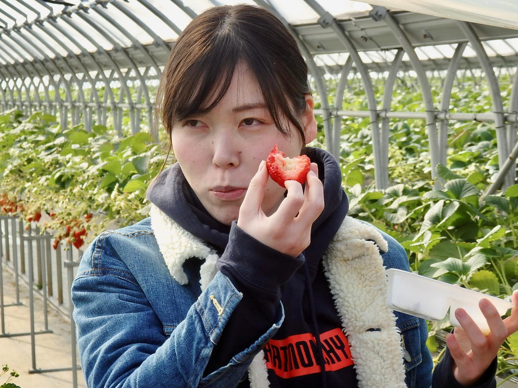 http://news.yoshimoto.co.jp/20190201171110-98b3281f6f8b9eabf52db58f65876124212bea1a.jpeg