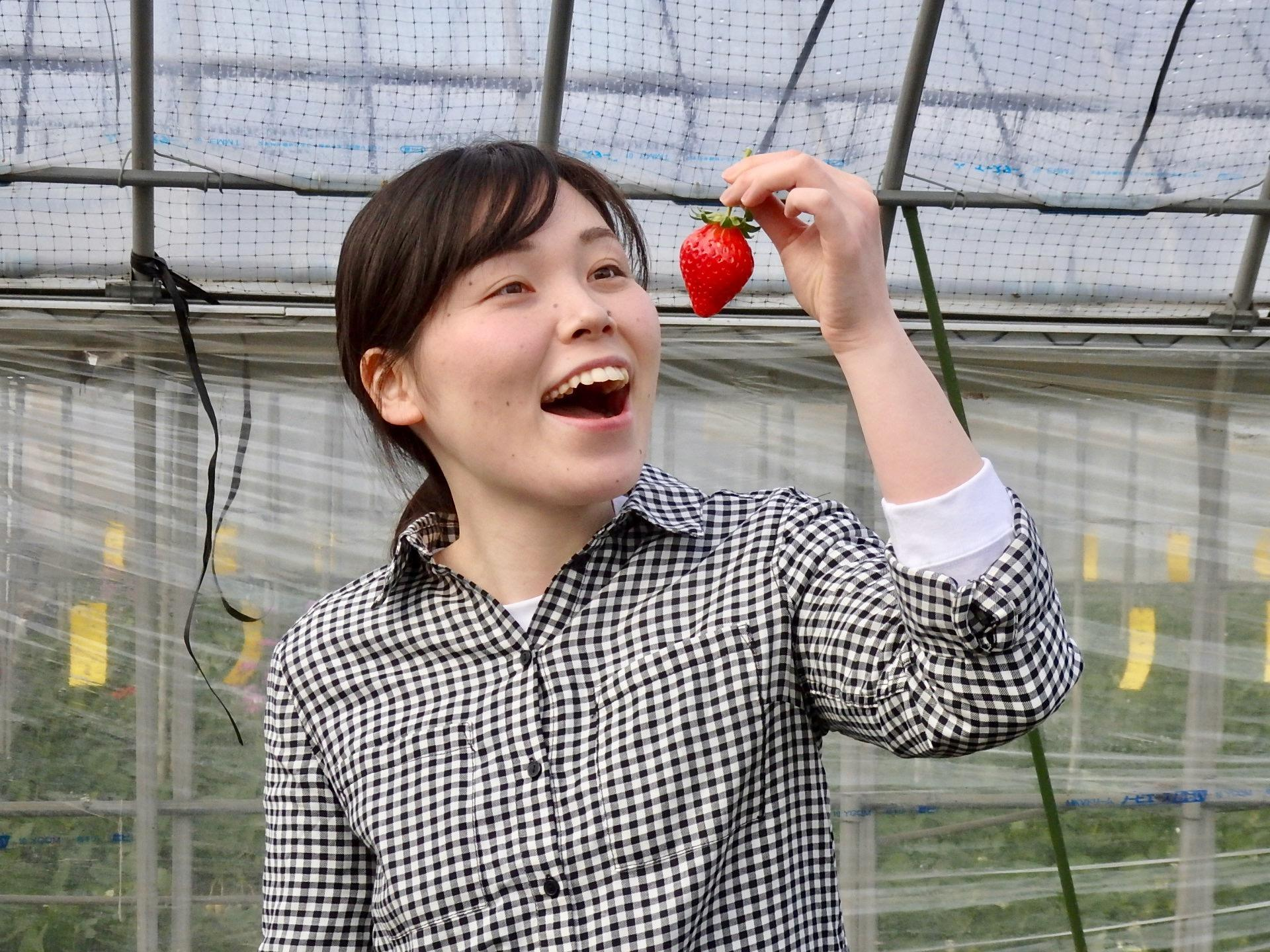 http://news.yoshimoto.co.jp/20190201171746-c240e29579ae428a63772e1f03e15f862b0f76c8.jpeg
